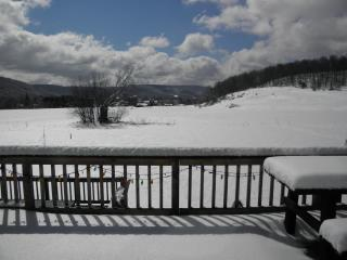 Holiday Valley ski area Christian Hollow Lodge - Great Valley vacation rentals