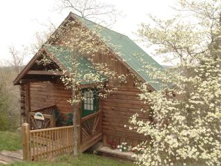 LogCabin,HotTub,Pool Access,WiFi,Dog friendly - Pigeon Forge vacation rentals