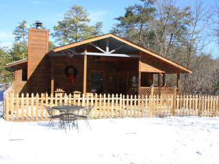 2 Bed/2 Bath Cabin Dog Friendly,Fenced Yard!! - Pigeon Forge vacation rentals