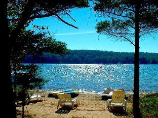 Open All Year*Sandy Beach*Pontoon Boat*NewerHome - Honor vacation rentals