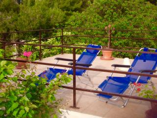 1 bedroom Condo with Television in Campo nell'Elba - Campo nell'Elba vacation rentals