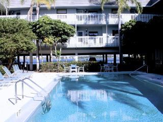 The Anna Maria Island Beach Palms - Anna Maria Island vacation rentals