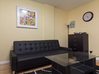 1 Bedroom near Midtown Manhattan - Manhattan vacation rentals