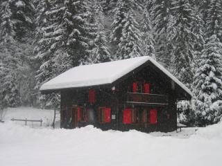 Chalet Sam Suphy Ski in/ski out - Morgins vacation rentals