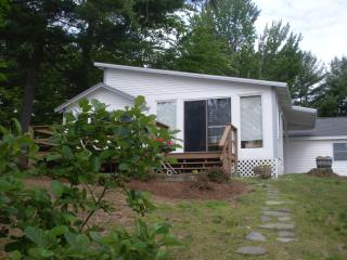 Cozy cottage on the lake, 40 ft dock,swimming - Belmont vacation rentals