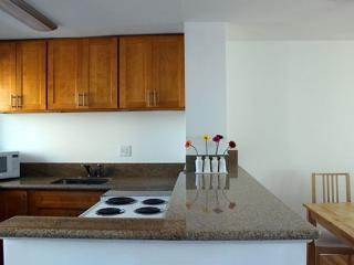 Completely Remodeled, 2 Bedroom Condo! - Honolulu vacation rentals