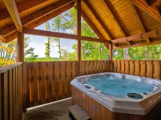 Bright Cabin with Internet Access and A/C - Sevierville vacation rentals