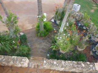 Haleiwa Secret Garden Paradise - Haleiwa vacation rentals