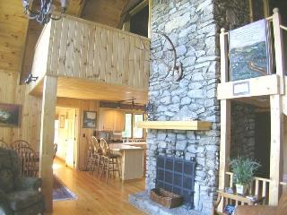 Mountain Cabin W/ 4 Fireplaces, 6 Person Hot Tub - Asheville vacation rentals
