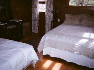 Cozy Nest is in  the Blue Ridge Mountains - Lake Toxaway vacation rentals