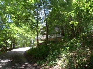 Bear Foot Inn: 4 Bed w/Community Swimming Pool - Gatlinburg vacation rentals