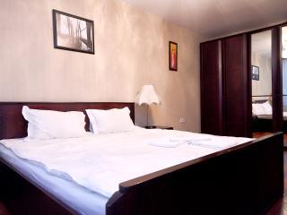 Cozy 2 bedroom Condo in Moscow - Moscow vacation rentals