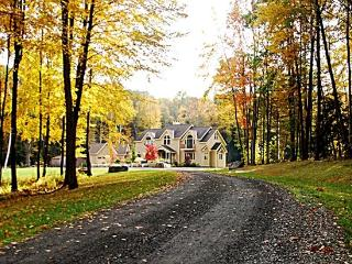 Elegant 6000+Sf Luxury Estate on 13+ Park - Great Barrington vacation rentals