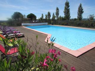 Gite de charme proche Cordes sur Ciel - Cordes-sur-Ciel vacation rentals