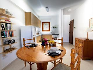 Skeleas Pissouri Apartment 1 (ground floor) - Pissouri vacation rentals
