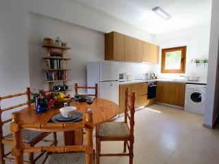 Skeleas Pissouri Apartment 2 (ground floor) - Pissouri vacation rentals