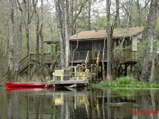 Relax on a Beautiful River in a Natural Florida - Woodville vacation rentals