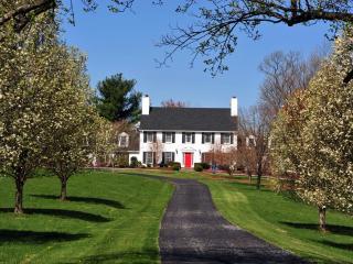 Spectacular Virginia estate in wine&horse country. - Leesburg vacation rentals