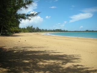 Yunque Mar Resort Pool Front Villa - Rio Grande vacation rentals