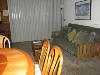 1 bed, 2 bath on shuttle route, undergrnd parking - Mammoth Lakes vacation rentals
