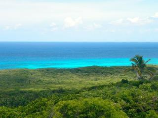 Cloudbreak, the Highest Ocean and Island View - Gregory Town vacation rentals