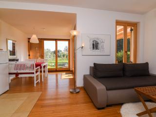 Casa Bamboo  - apartment no 1 with the pool - Banjole vacation rentals