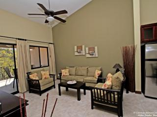 Fully Furnished Serene Centrally Located Condo - Playas del Coco vacation rentals