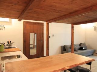 Santo Spirito Stylish Studio - Florence vacation rentals