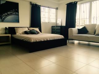 Room for rent in a centrical beautiful apt - Santo Domingo vacation rentals