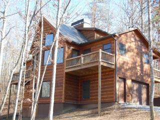 Buck Valley Lodge - Luxury Cabin - Ellijay vacation rentals