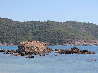 Campagne et nature à juste 1 kmde la plage ! - Cargese vacation rentals
