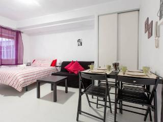 Home Rentals Madrid Center 0-3 AC&WIFI - Madrid vacation rentals
