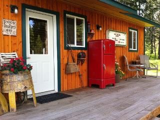 Cute Cabin 10 Minutes from Silverwood - Athol vacation rentals