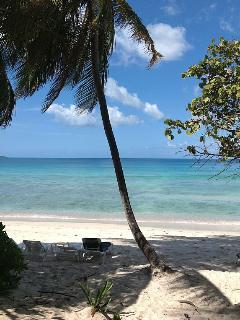 Mermaid Suite at Peaceful Long Bay - Long Bay vacation rentals