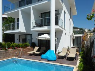 3 bed luxury duplex apartment with private pool - Kalkan vacation rentals