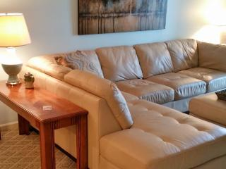 Classy Condo on the Bluff, Pet Friendly - Branson vacation rentals
