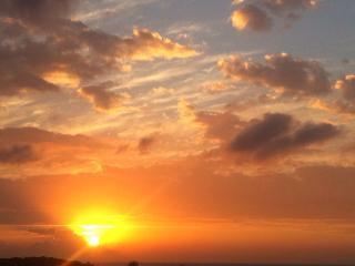 Ocean View Condo, Roatan, TripAdvisor top choice. - French Harbour vacation rentals