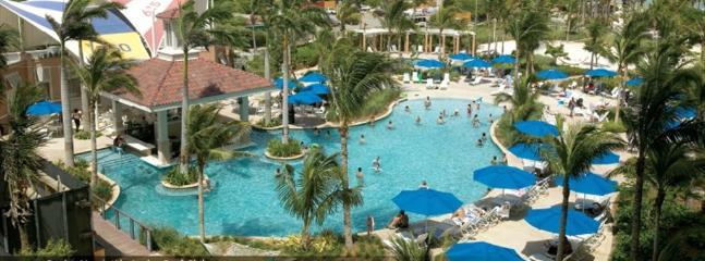Marriott Aruba Surf Club. All Weeks, Best Rates! - Image 1 - Palm Beach - rentals