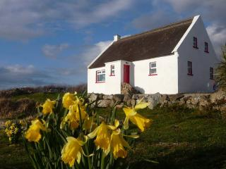 Seal Cottage - Dungloe vacation rentals