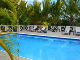Villa Near Beach, Lush Garden, Chromatic Pool - Grace Bay vacation rentals
