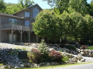 BEAUTIFULL HOME, WI-FI, POOL TABLE, ETC - McGaheysville vacation rentals