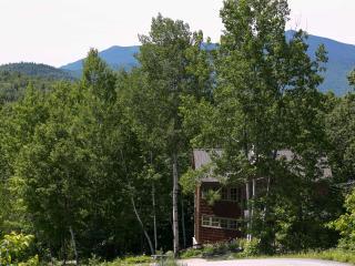 Unique Home on Black Mtn. Views, Sun, Private - Jackson vacation rentals