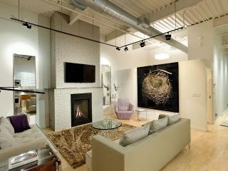 Impeccable Loft,Perfect Location in Basalt-Aspen - Basalt vacation rentals