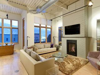 Impeccable Loft,Perfect Location in Basalt-Aspen - Basalt vacation rentals