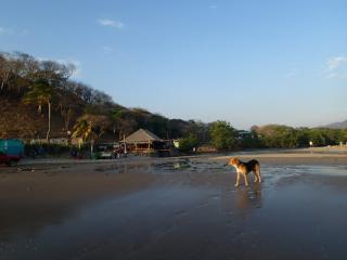 Casa Pelon - Playa Maderas vacation rentals