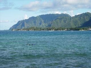 Oceanfront Cottage/Boathouse - Right on the Ocean - Hauula vacation rentals
