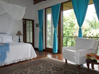 Jamaica Vacation Private Estate 6 bd/bth, 5 staff - Port Antonio vacation rentals
