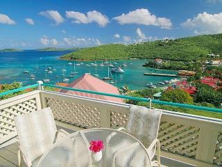 Luxury Cruz Bay Condo Offers Awesome Views - Cruz Bay vacation rentals