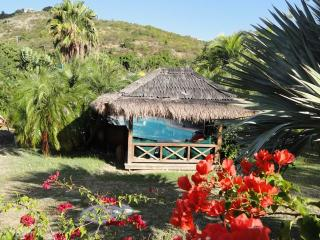 Charming Cottage with Internet Access and A/C - Salines vacation rentals