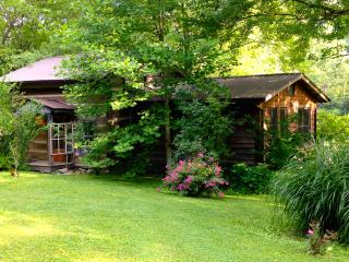 Restored Log Cabin in the mountains - Irvine vacation rentals